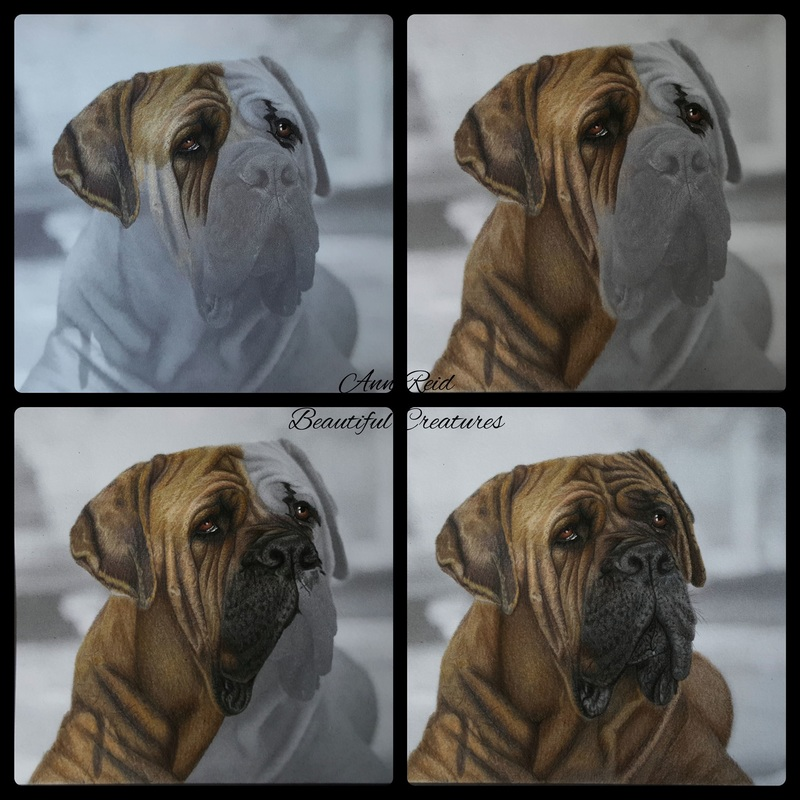 Blog Post: A Grayscale Coloring Tutorial For Lifelike Results ...