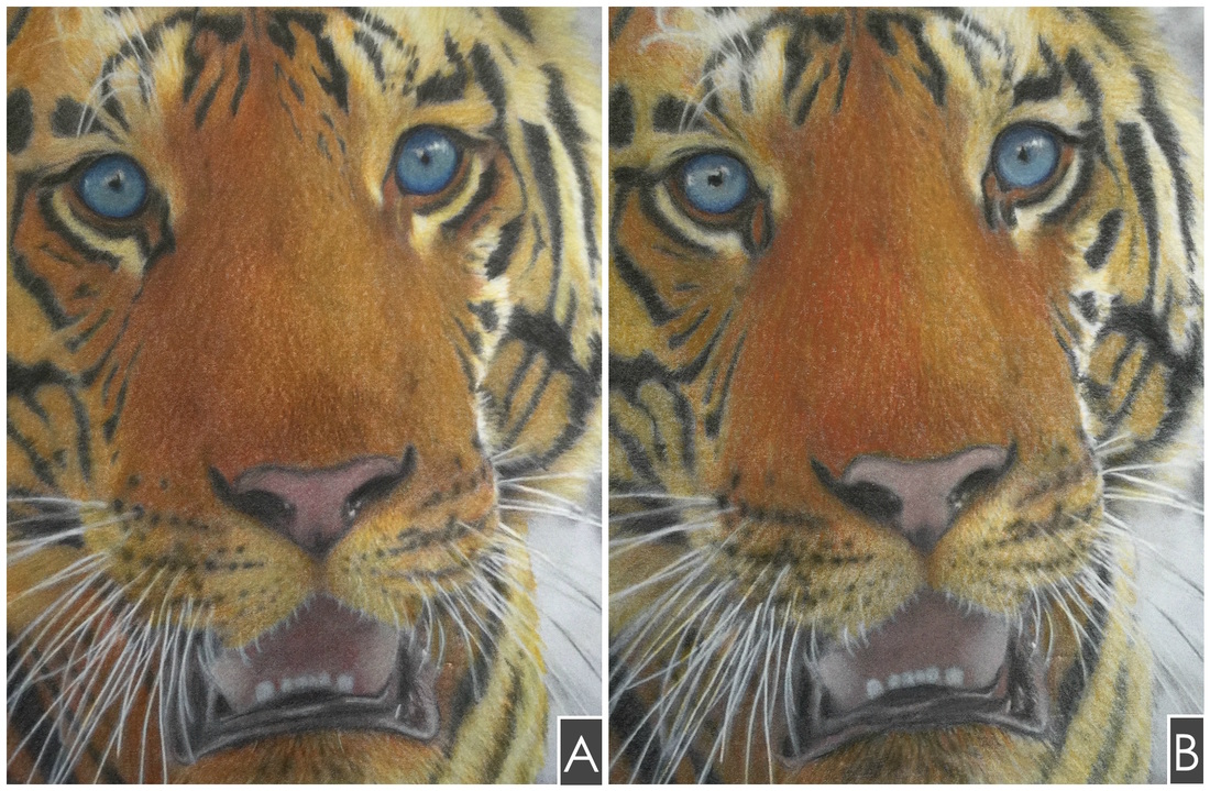 Prismacolor Premiers Vs Faber Castell Polychromos Which Was Colored With