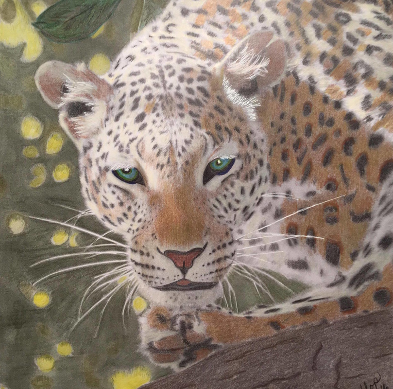 Leopard from the Beautiful Creatures grayscale coloring book. Colored by Bonnie Flamm Stichter
