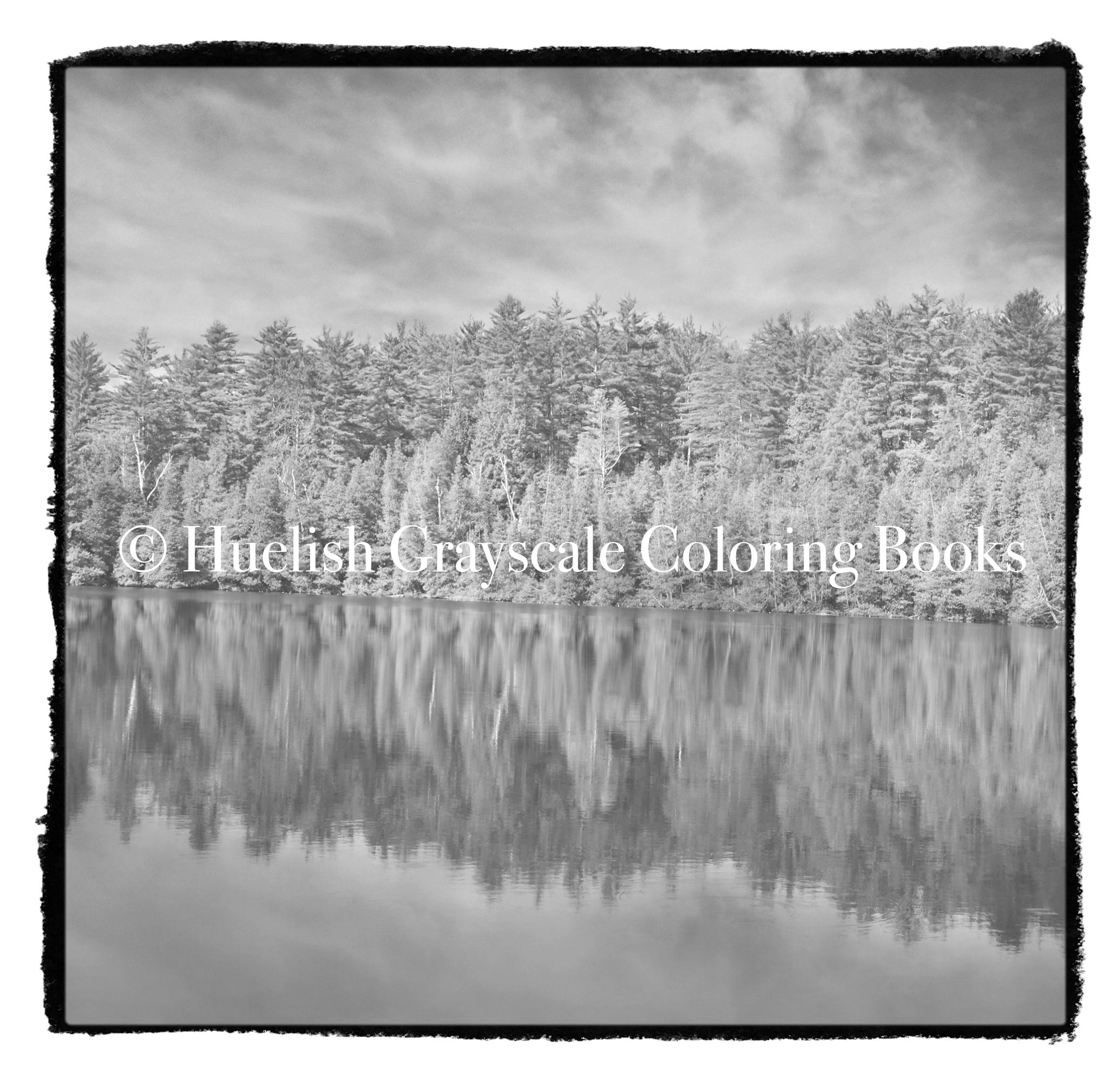 Downloadable Grayscale Coloring Page Tree Reflection Landscape