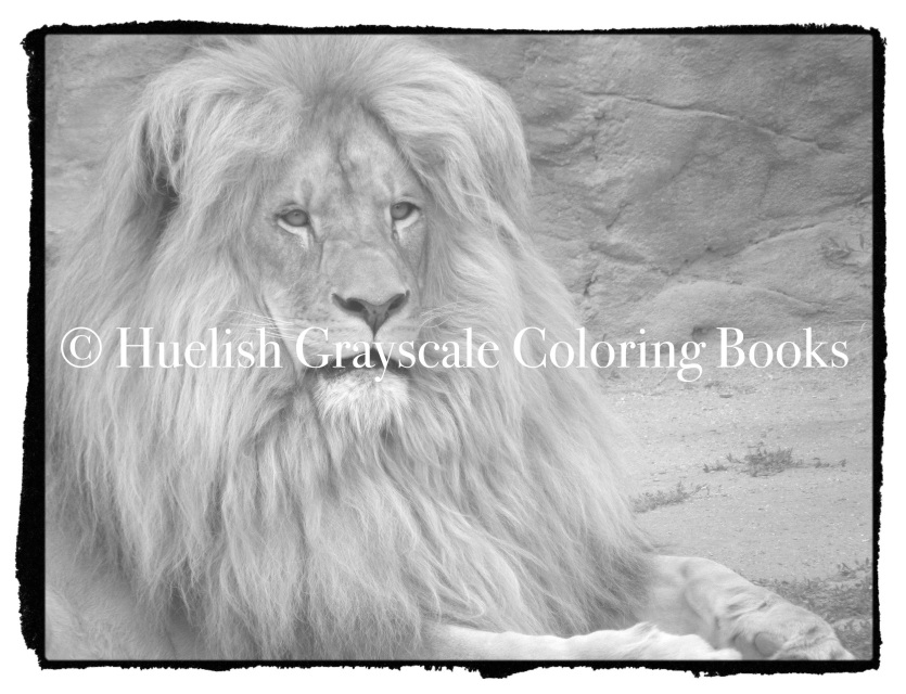Downloadable Grayscale Coloring Page Lion