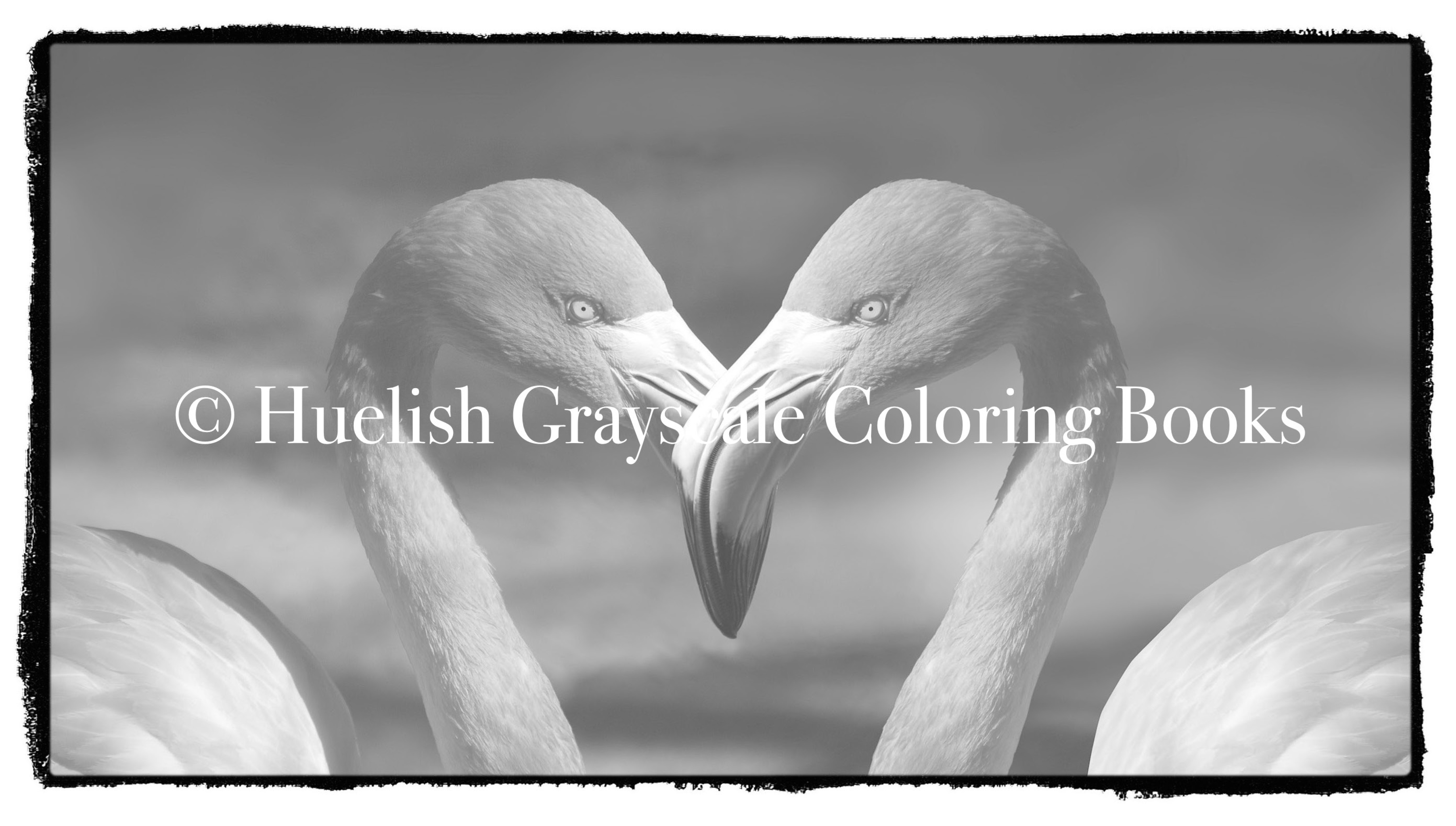 Grayscale BIRDS Coloring Pack 7 PAGES